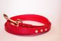 matching faux snakeskin lead in red