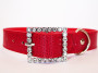 faux snakeskin collar in red with diamante buckle