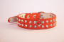 rhinestone collar in orange