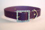 faux snakeskin diamante buckle collar in purple