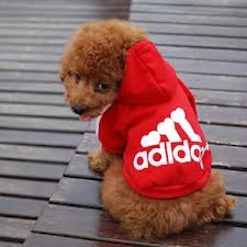 adidog hoody red