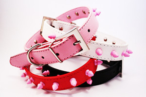 pink studded collar in 4 colours