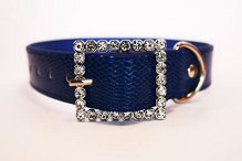 faux snakeskin collar blue